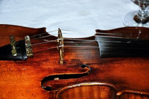 Varno Musical Instrument Repair - Stringed Instrument Repair